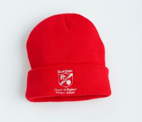 Borden Knitted Ski Hat (BD8409)