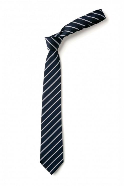 Haverstock Clip-On Tie (8925)