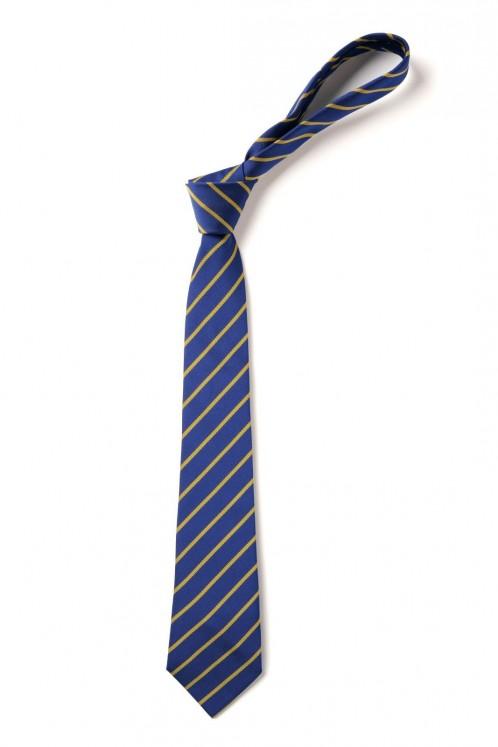 Glebe Primary School Elastic Tie (8983)