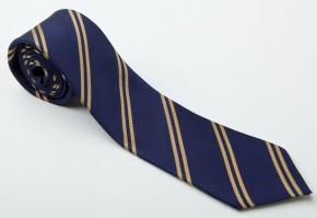 BBS School Tie (BBS8022)