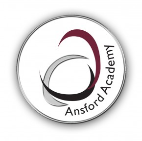 Ansford Academy Pin Badge (8583)