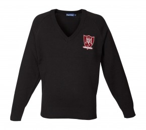 Arts and Media School Islington 50/50 V-Neck Pullover (8642)