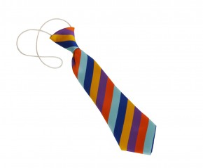 New North Academy Elasticated Tie (8738)