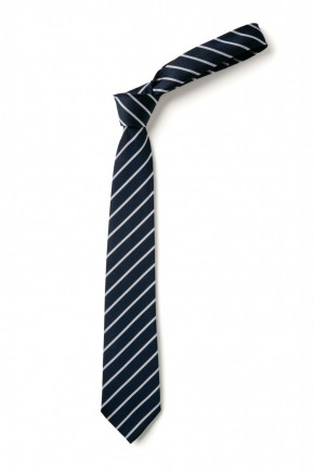 Haverstock Clip-On Tie (8925)