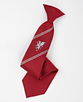 COLAi School Tie - Years 7-9 (CL8172)